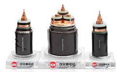 Desarrollo Co., Ltd de la industria del cable de Shenzhen Chengtiantai