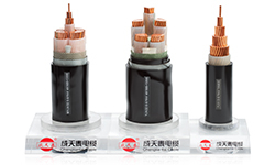 Shenzhen Chengtiantai Cable Industry Development Co.,Ltd