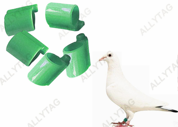Poultry UHF RFID TAGS Animal Pigeon Foot Loop  For Tracing Management