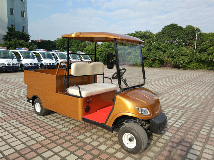 Compact Electric Cargo Car , 2 Seater Electric Car With 2pcs Rear View Mirror